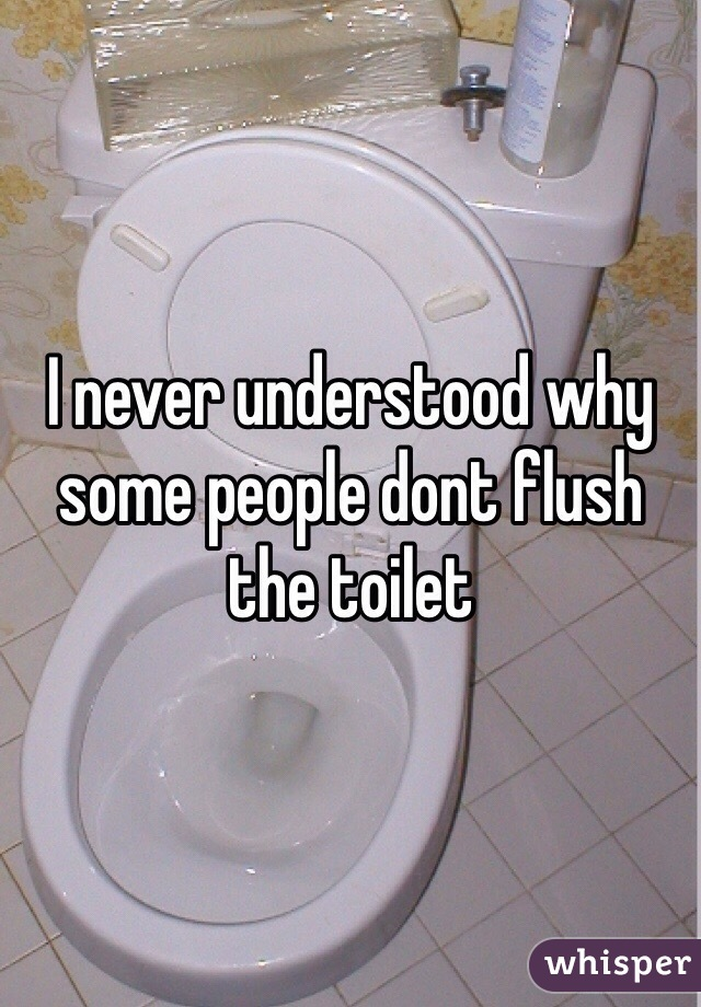 I never understood why some people dont flush the toilet