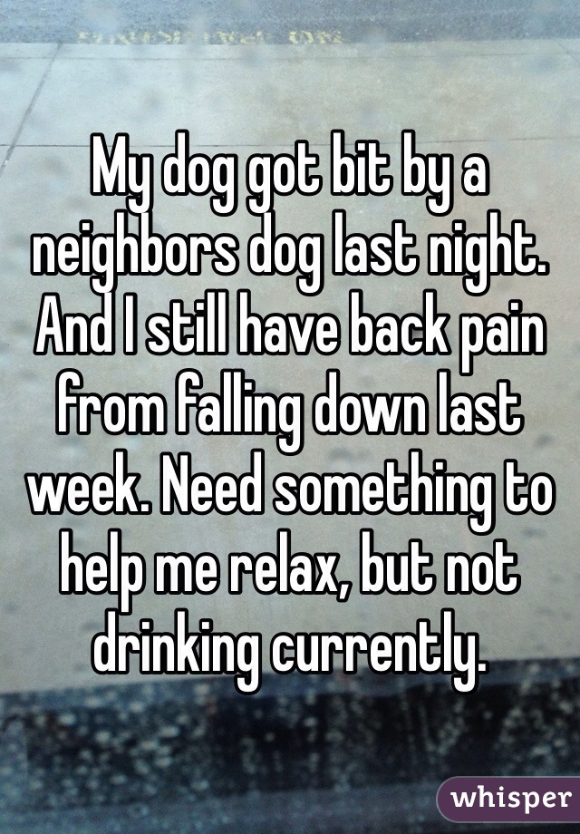 My dog got bit by a neighbors dog last night. And I still have back pain from falling down last week. Need something to help me relax, but not drinking currently.