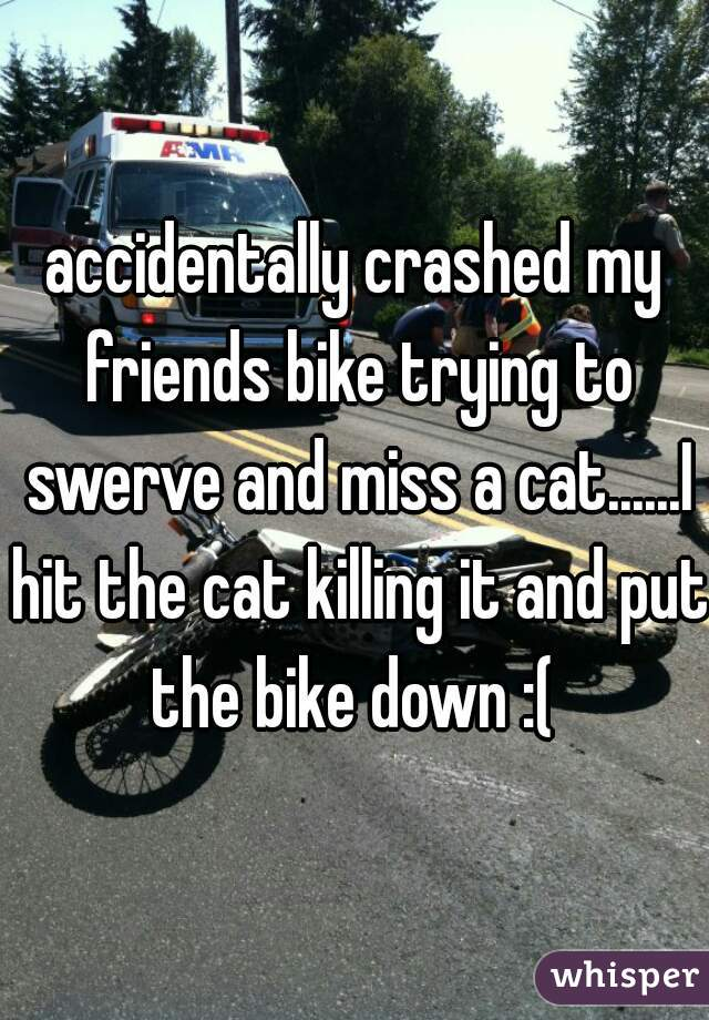 accidentally crashed my friends bike trying to swerve and miss a cat......I hit the cat killing it and put the bike down :(
