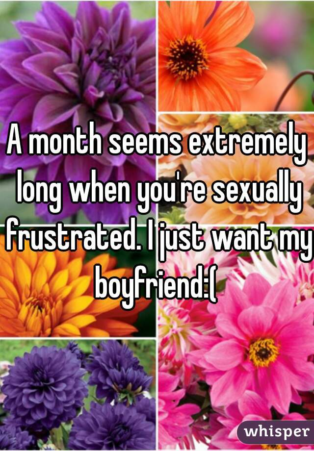 A month seems extremely long when you're sexually frustrated. I just want my boyfriend:(