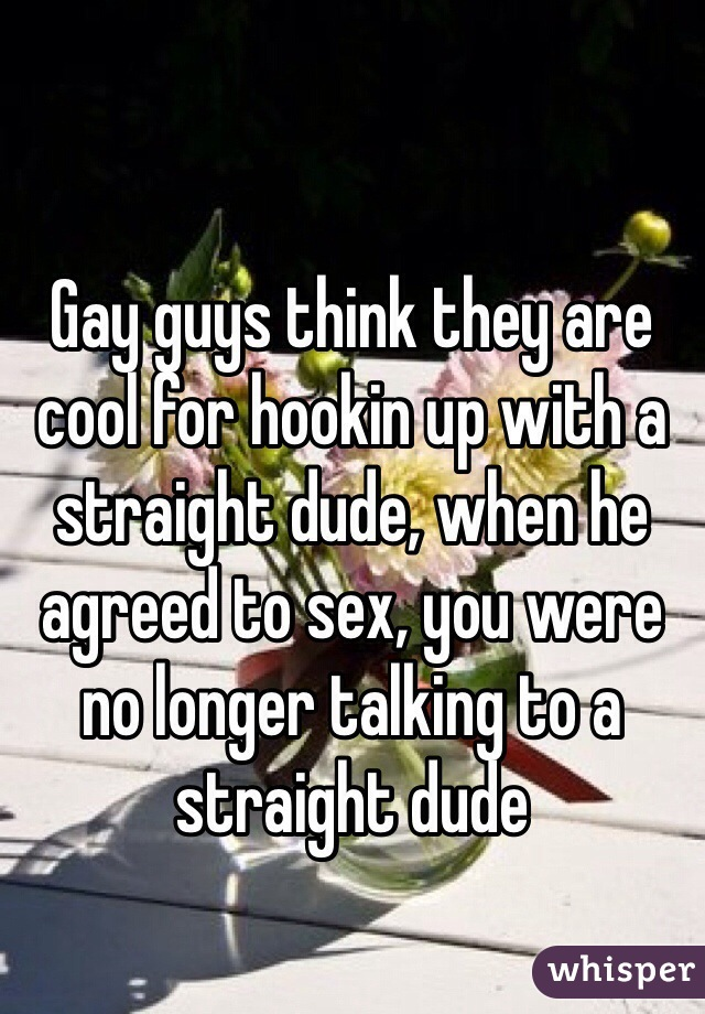 Gay guys think they are cool for hookin up with a straight dude, when he agreed to sex, you were no longer talking to a straight dude