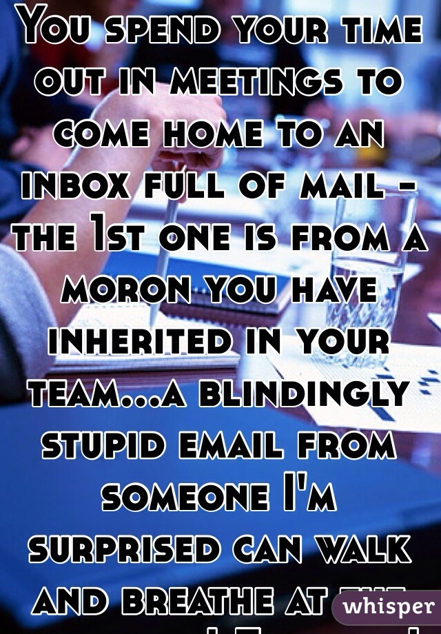 You spend your time out in meetings to come home to an inbox full of mail - the 1st one is from a moron you have inherited in your team...a blindingly stupid email from someone I'm surprised can walk and breathe at the same time! Fuck wit!