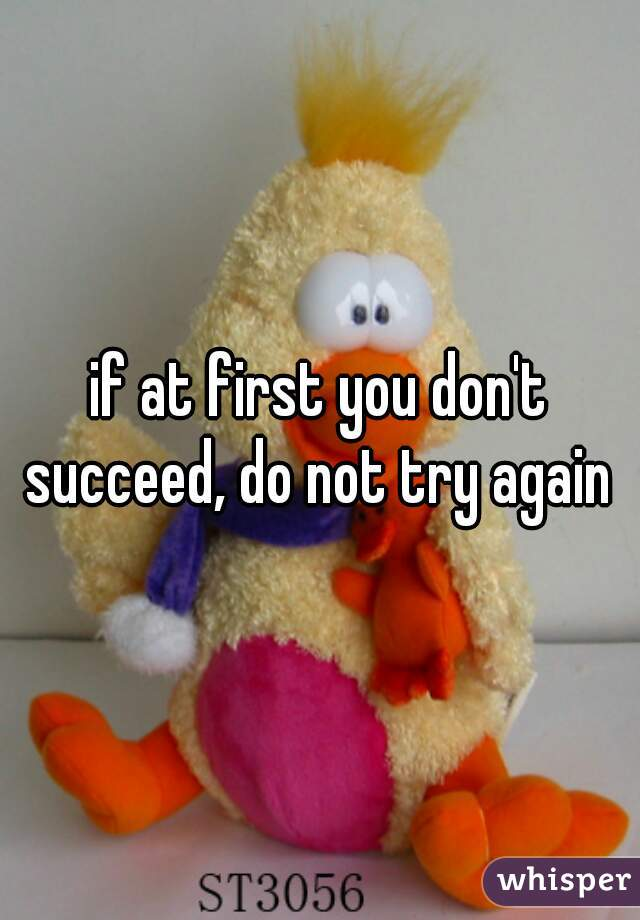 if at first you don't succeed, do not try again