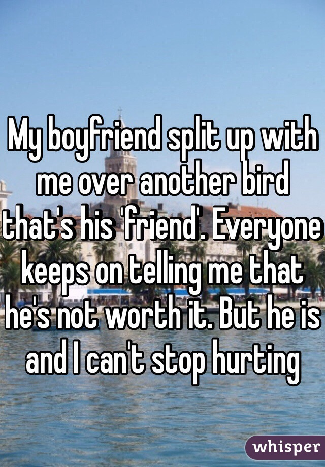 My boyfriend split up with me over another bird that's his 'friend'. Everyone keeps on telling me that he's not worth it. But he is and I can't stop hurting