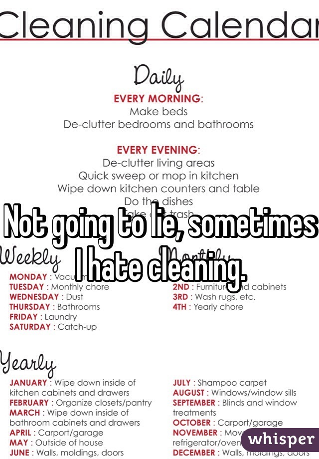 Not going to lie, sometimes I hate cleaning.