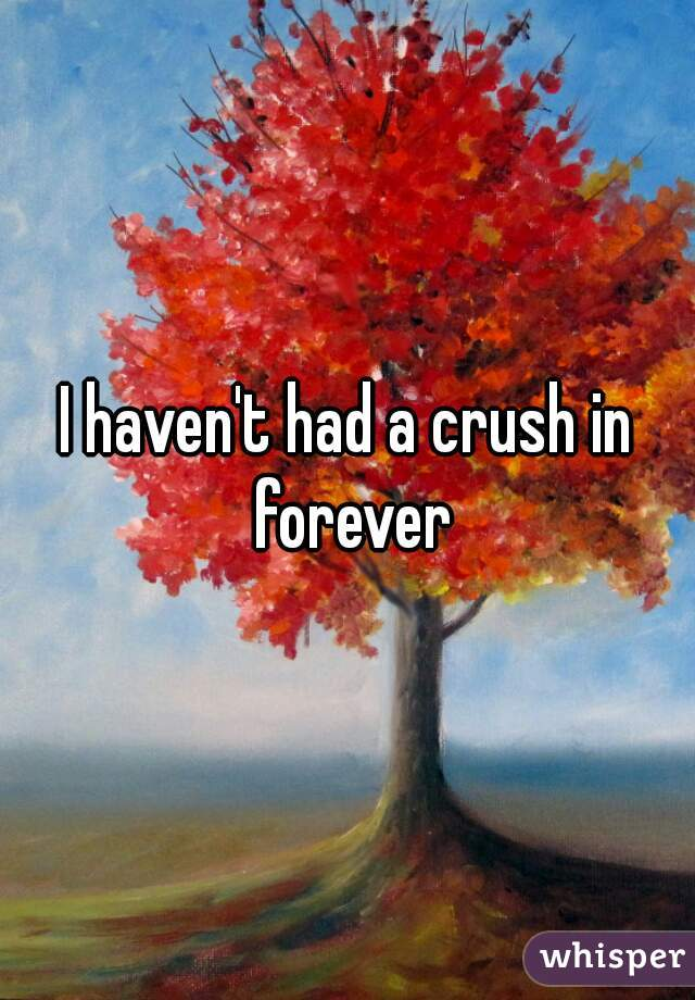 I haven't had a crush in forever