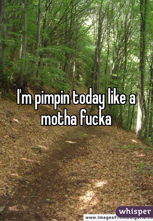 I'm pimpin today like a motha fucka