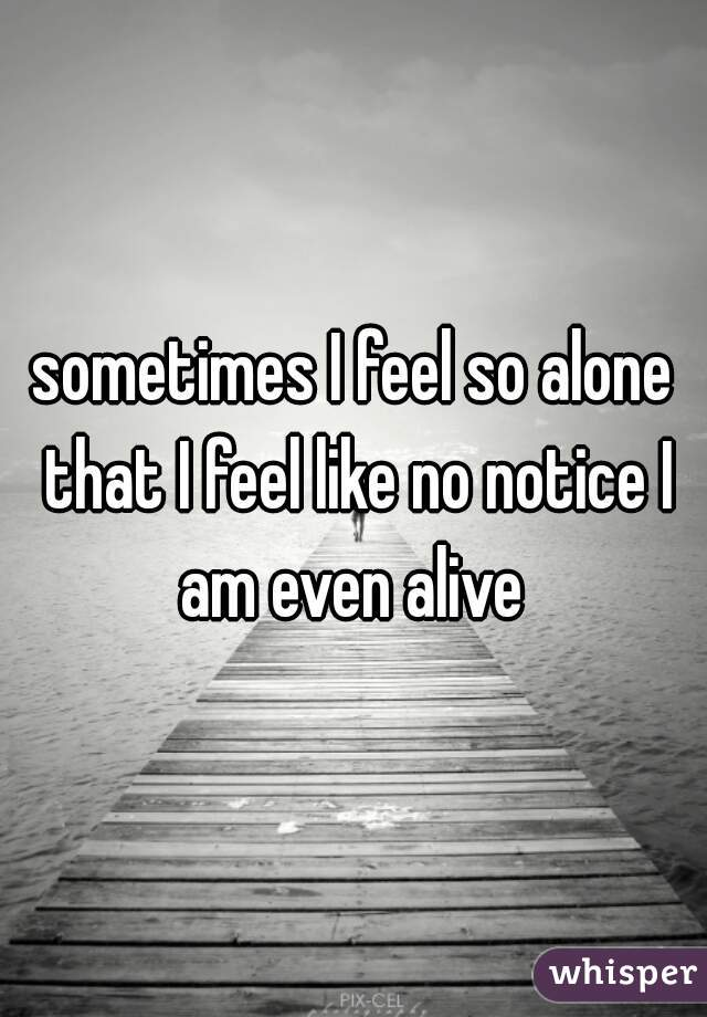 sometimes I feel so alone that I feel like no notice I am even alive
