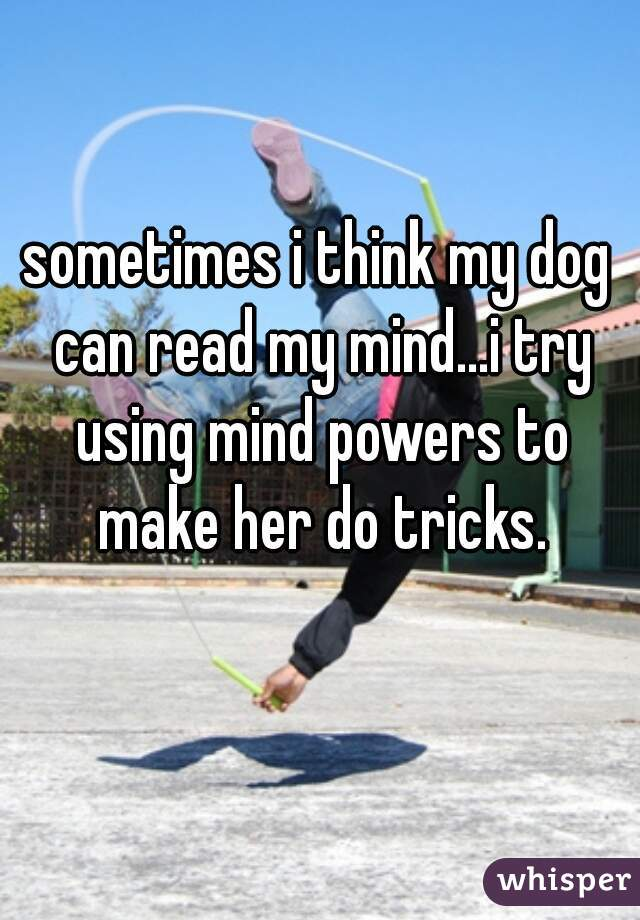 sometimes i think my dog can read my mind...i try using mind powers to make her do tricks.