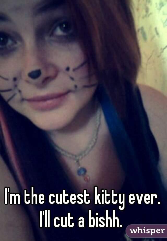 I'm the cutest kitty ever. I'll cut a bishh.