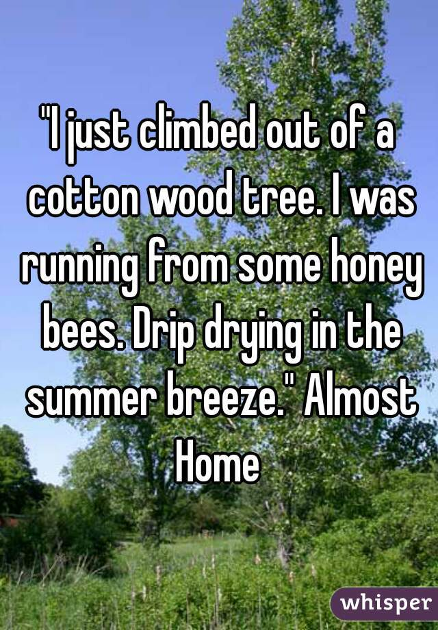 """""""I just climbed out of a cotton wood tree. I was running from some honey bees. Drip drying in the summer breeze."""" Almost Home"""