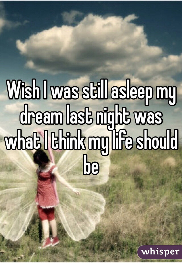 Wish I was still asleep my dream last night was what I think my life should be