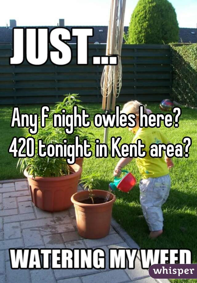 Any f night owles here?  420 tonight in Kent area?