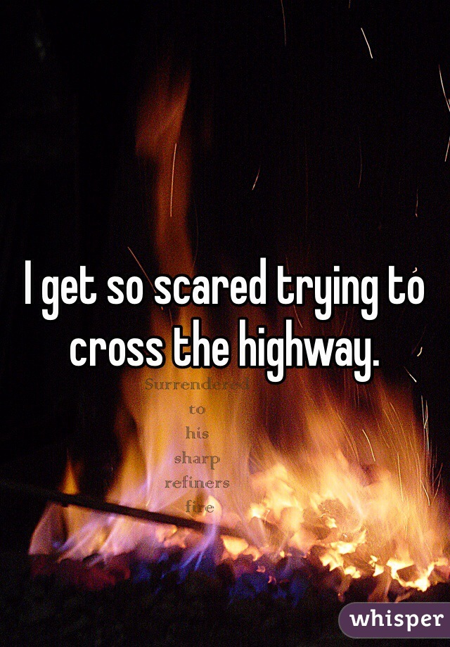 I get so scared trying to cross the highway.