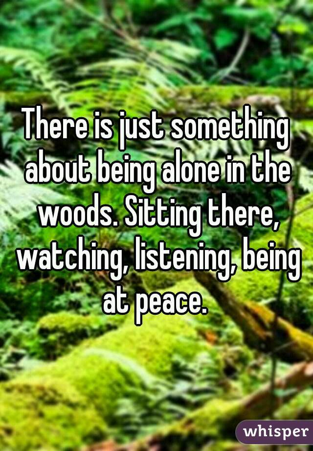 There is just something about being alone in the woods. Sitting there, watching, listening, being at peace.