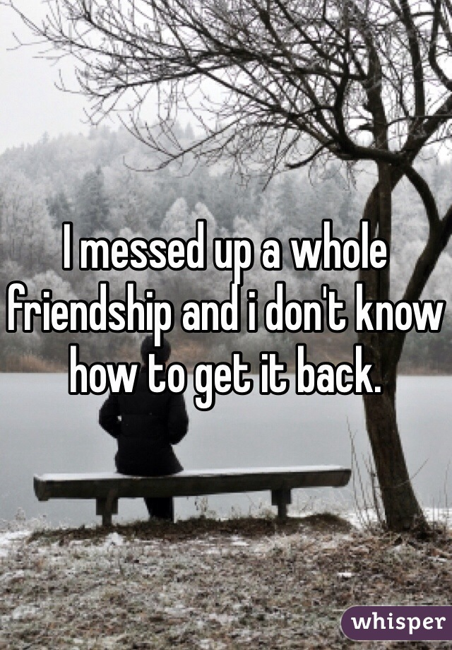 I messed up a whole friendship and i don't know how to get it back.