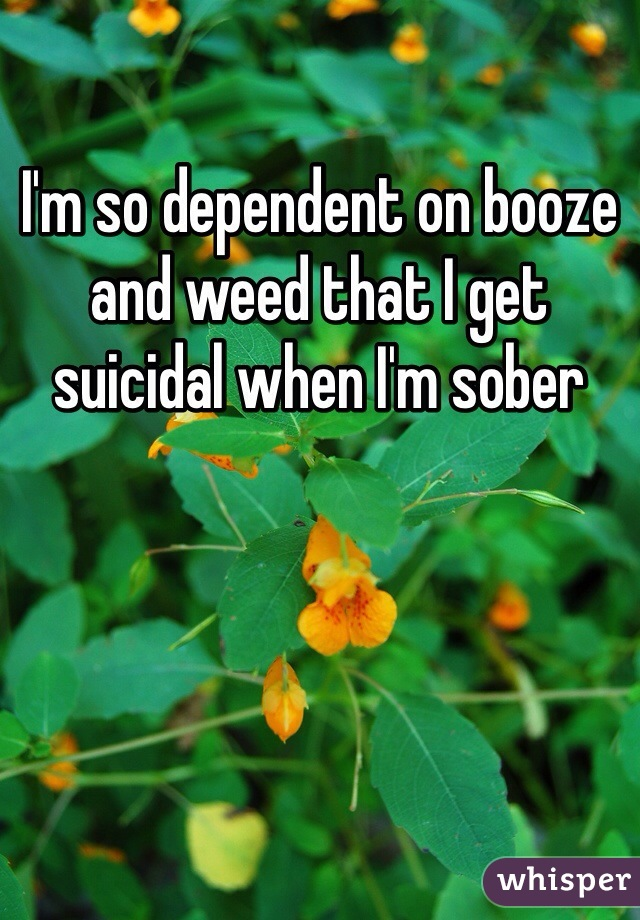 I'm so dependent on booze and weed that I get suicidal when I'm sober