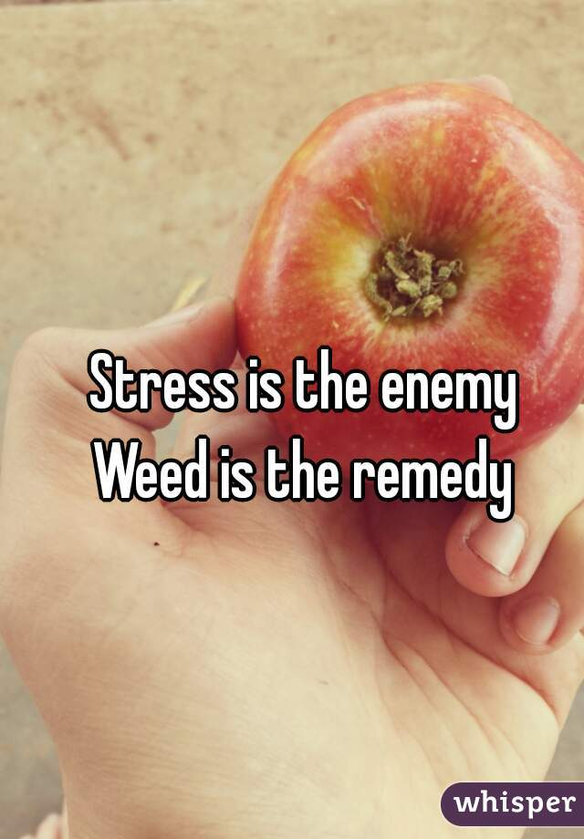 Stress is the enemy    Weed is the remedy
