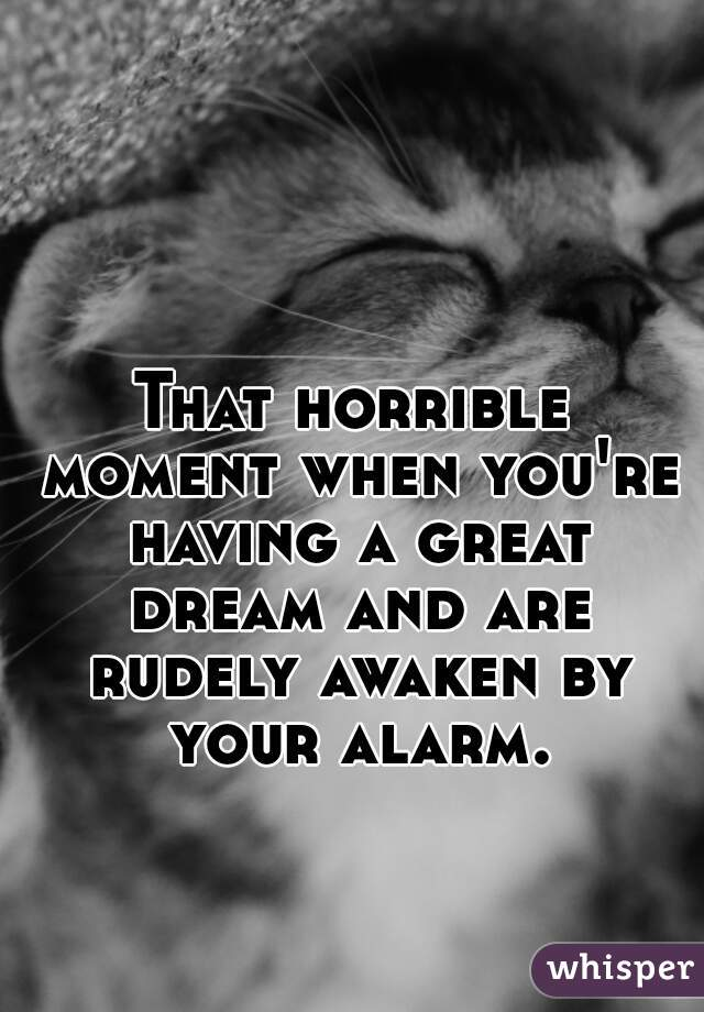 That horrible moment when you're having a great dream and are rudely awaken by your alarm.