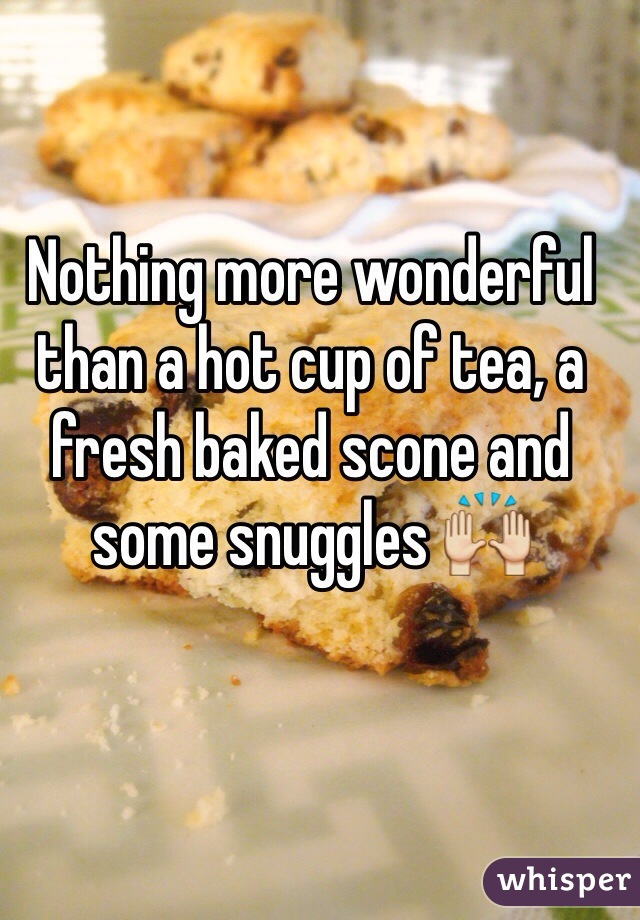 Nothing more wonderful than a hot cup of tea, a fresh baked scone and some snuggles 🙌