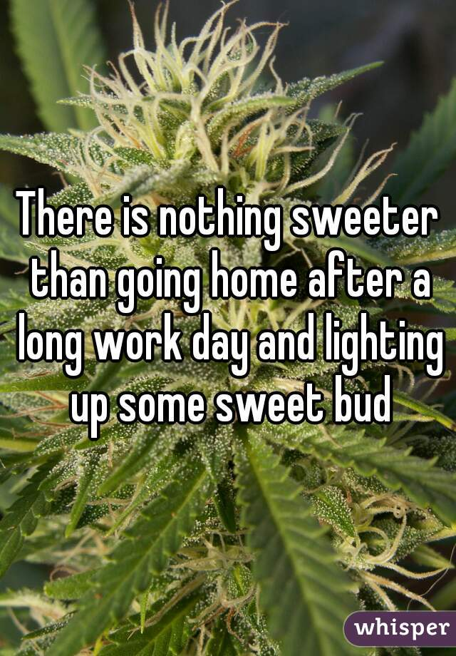 There is nothing sweeter than going home after a long work day and lighting up some sweet bud