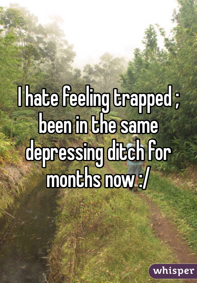I hate feeling trapped ; been in the same depressing ditch for months now :/