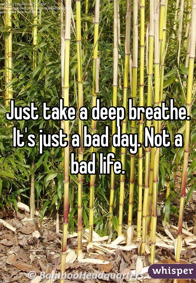 Just take a deep breathe. It's just a bad day. Not a bad life.