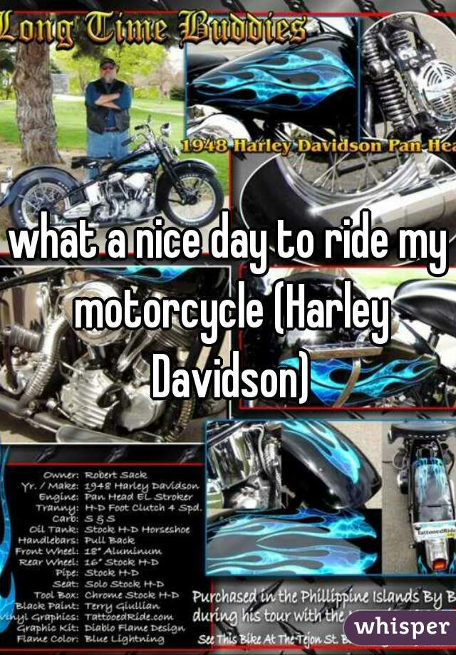 what a nice day to ride my motorcycle (Harley Davidson)