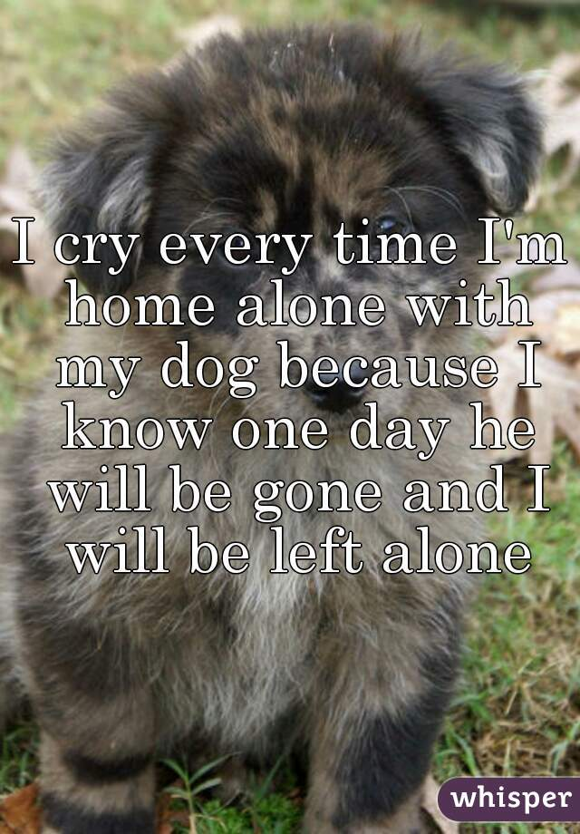 I cry every time I'm home alone with my dog because I know one day he will be gone and I will be left alone