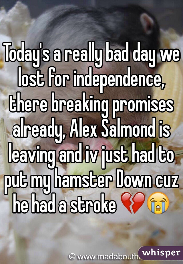 Today's a really bad day we lost for independence, there breaking promises already, Alex Salmond is leaving and iv just had to put my hamster Down cuz he had a stroke 💔😭