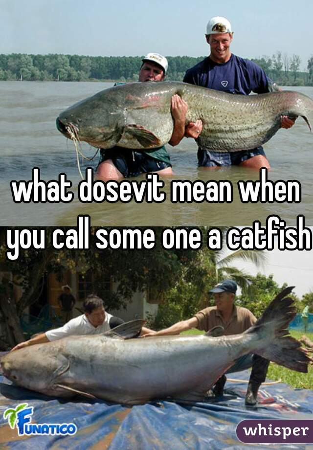 what dosevit mean when you call some one a catfish