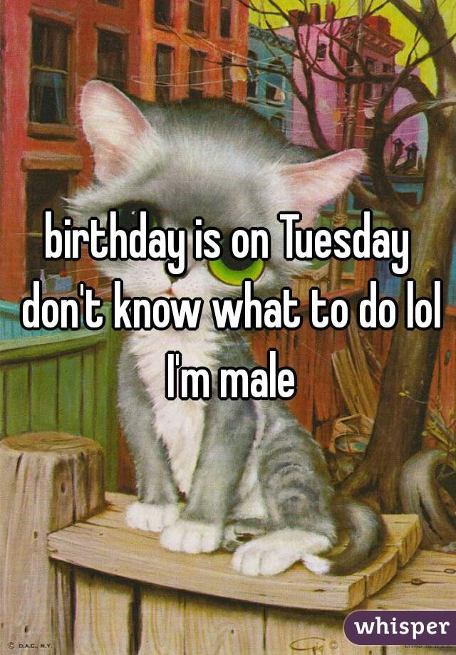 birthday is on Tuesday don't know what to do lol I'm male