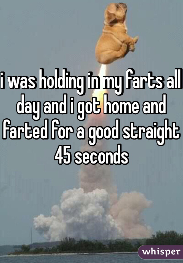 i was holding in my farts all day and i got home and farted for a good straight 45 seconds