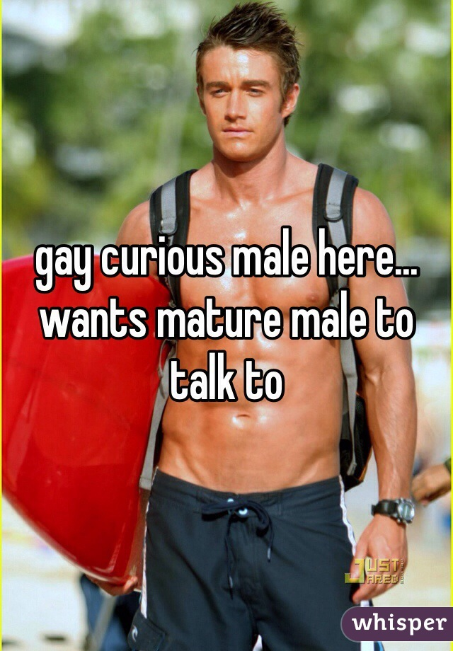 gay curious male here... wants mature male to talk to