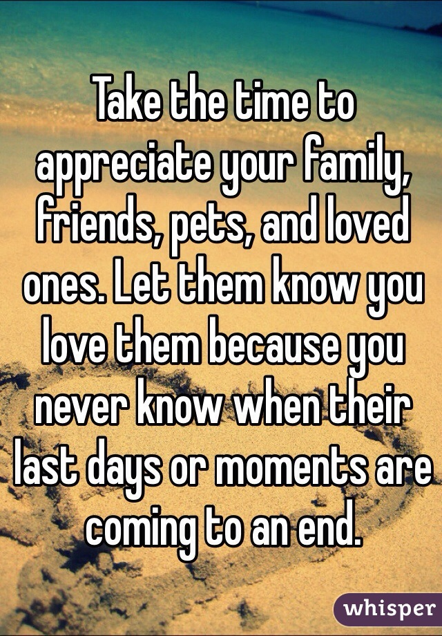 Take the time to appreciate your family, friends, pets, and loved ones. Let them know you love them because you never know when their last days or moments are coming to an end.