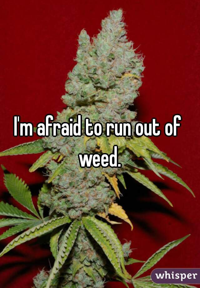 I'm afraid to run out of weed.