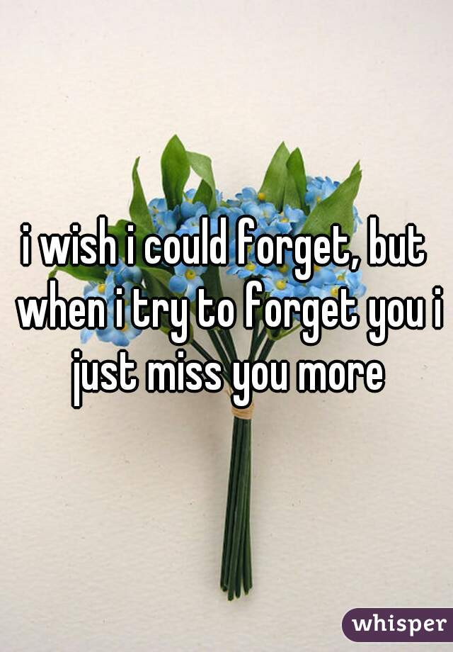 i wish i could forget, but when i try to forget you i just miss you more