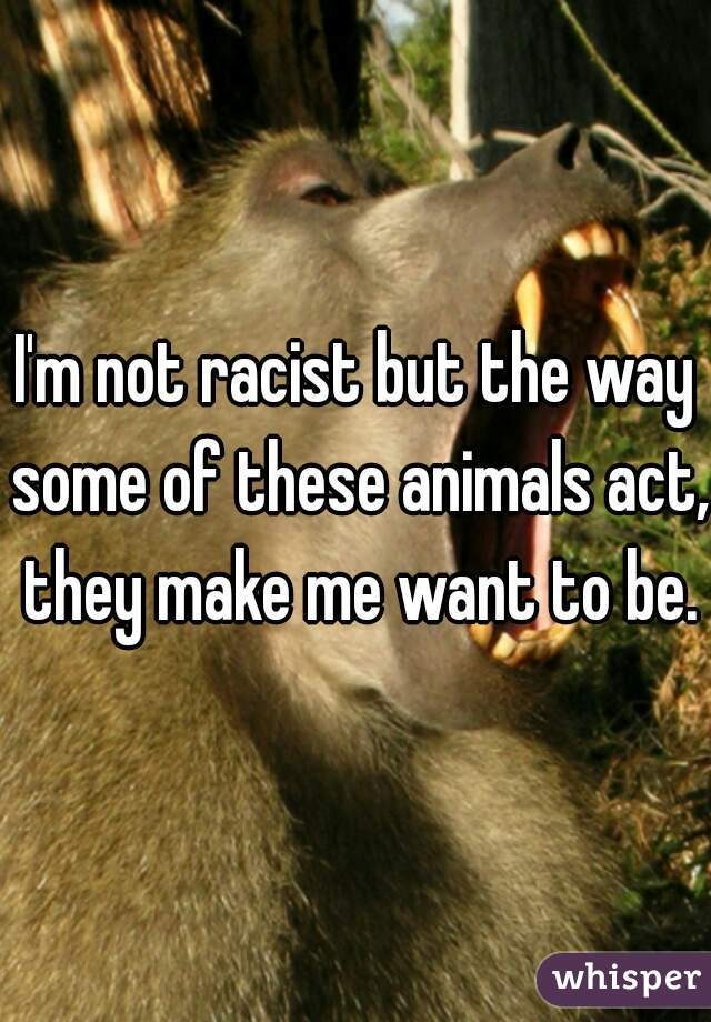 I'm not racist but the way some of these animals act, they make me want to be.