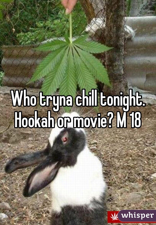 Who tryna chill tonight. Hookah or movie? M 18