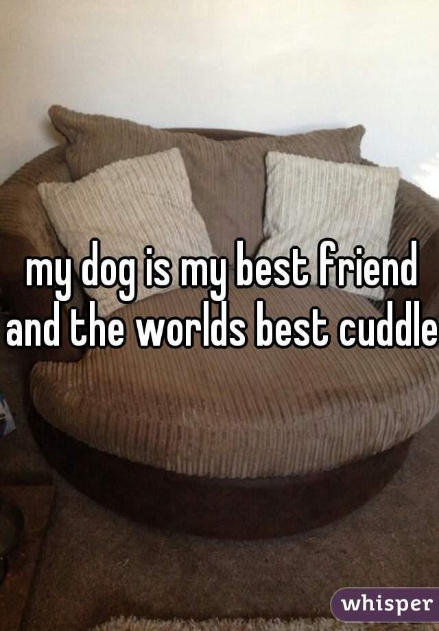 my dog is my best friend and the worlds best cuddler