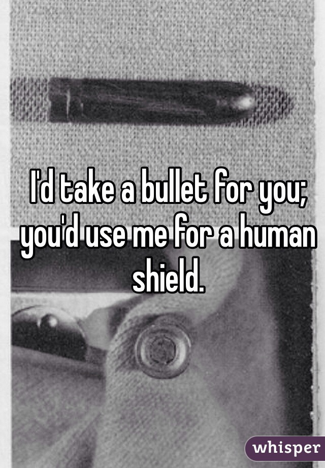I'd take a bullet for you; you'd use me for a human shield.