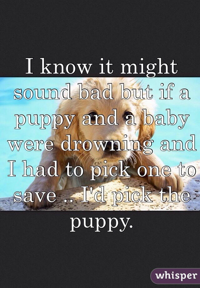 I know it might sound bad but if a puppy and a baby were drowning and I had to pick one to save .. I'd pick the puppy.