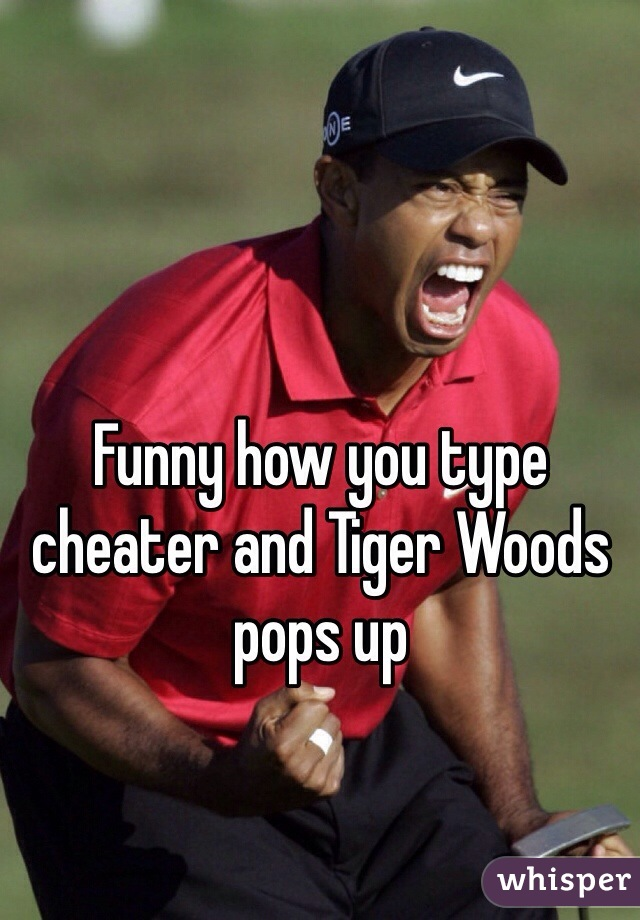 Funny how you type cheater and Tiger Woods pops up