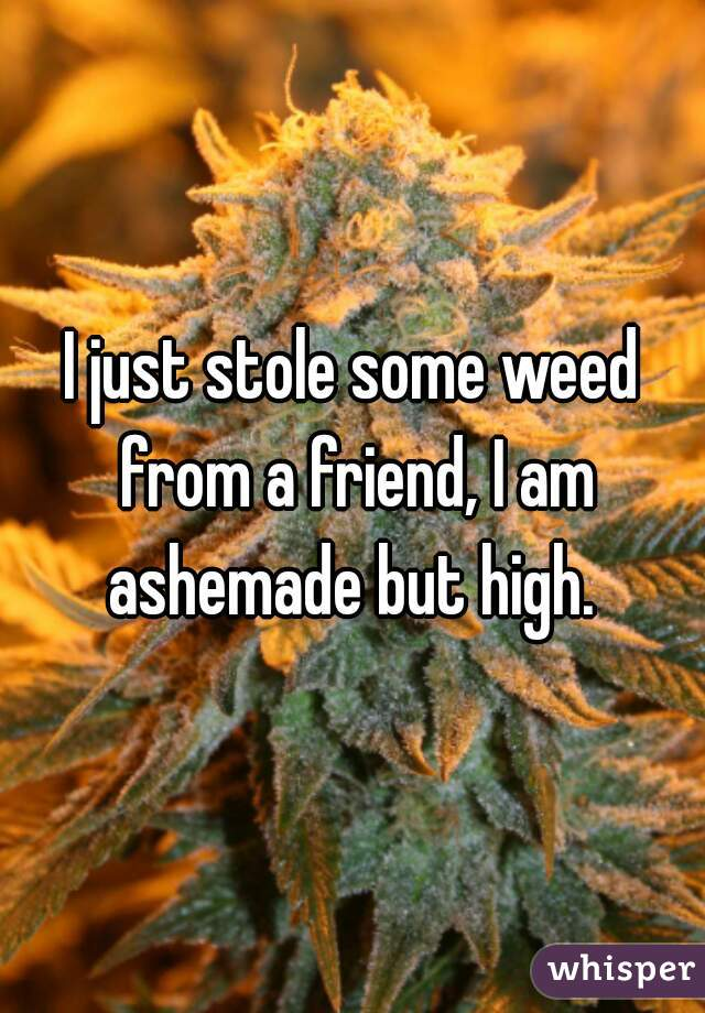I just stole some weed from a friend, I am ashemade but high.