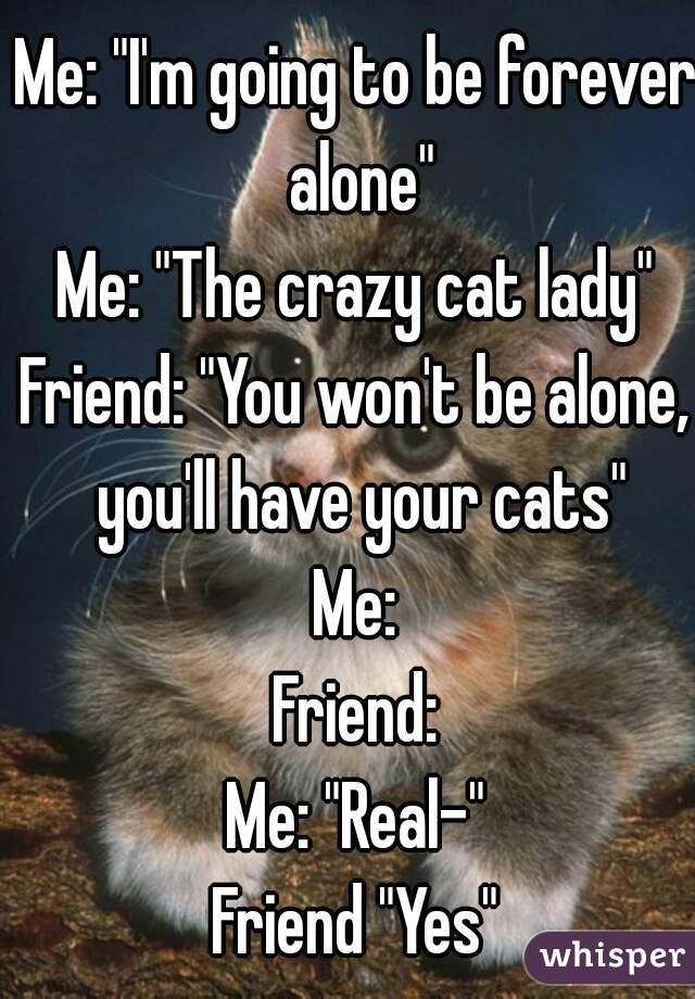 """Me: """"I'm going to be forever alone"""" Me: """"The crazy cat lady"""" Friend: """"You won't be alone, you'll have your cats"""" Me: Friend: Me: """"Real-"""" Friend """"Yes"""""""