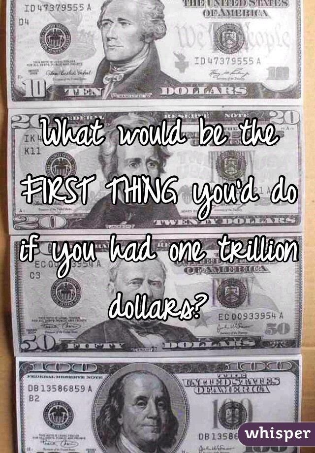 What would be the FIRST THING you'd do if you had one trillion dollars?