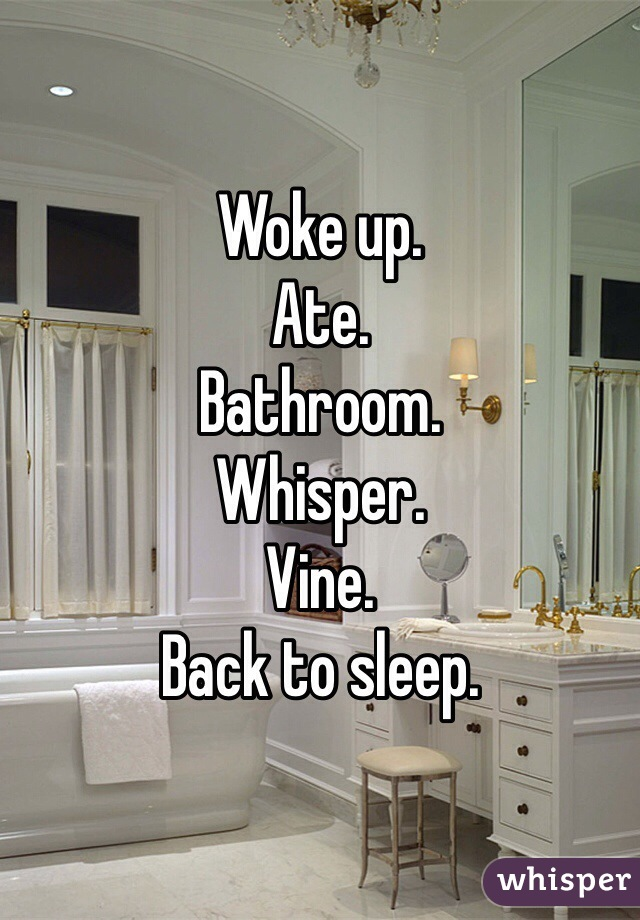 Woke up. Ate. Bathroom. Whisper. Vine. Back to sleep.