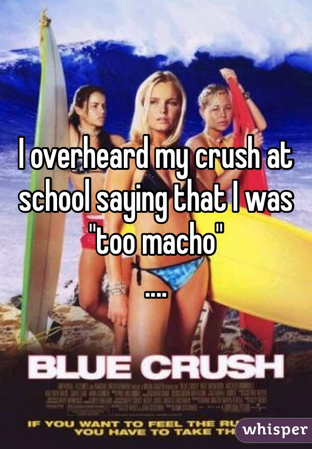 "I overheard my crush at school saying that I was ""too macho"" ...."