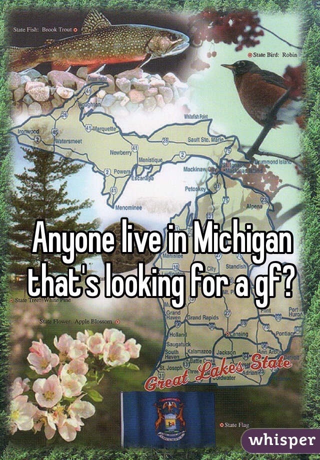 Anyone live in Michigan that's looking for a gf?