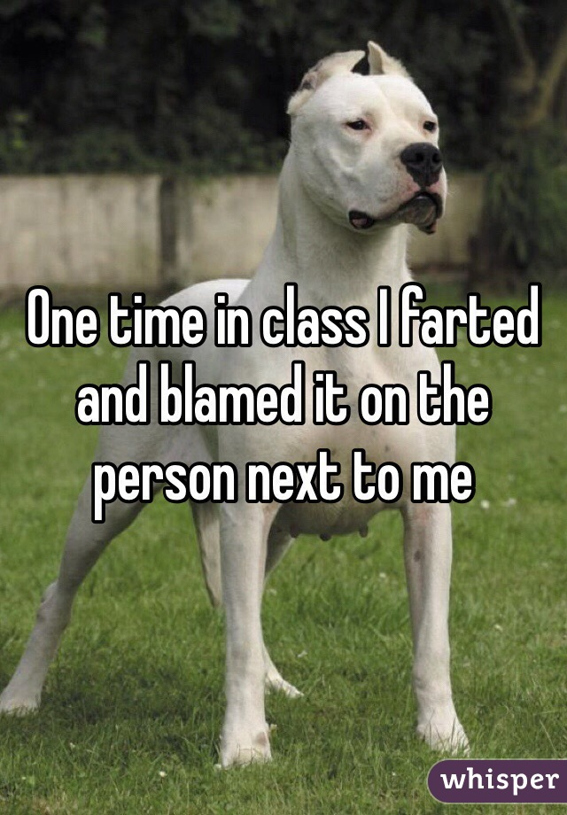 One time in class I farted and blamed it on the person next to me